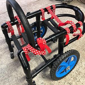 wheelchair-superiorityx8
